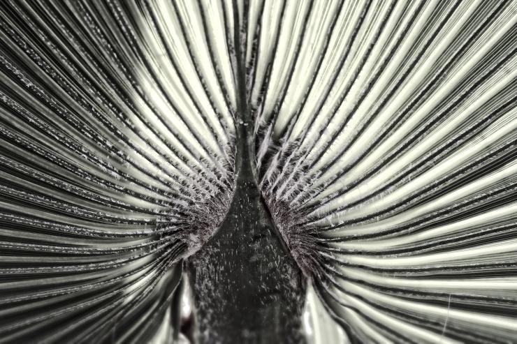 Symmetrien