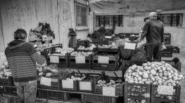 Markttag1